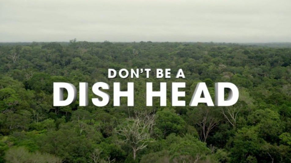 "TV Spot: ""Dish Head Discovery"""