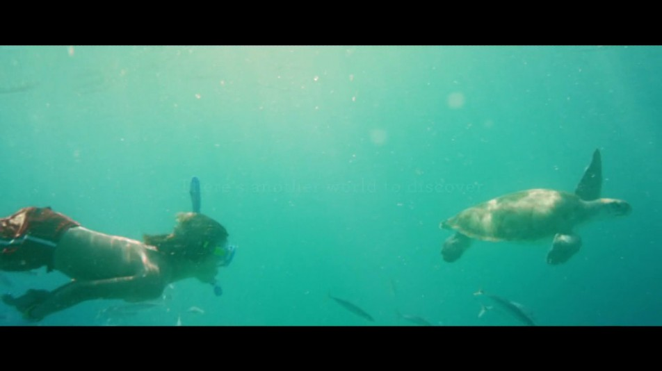 "TV Spot: ""Turtles"""